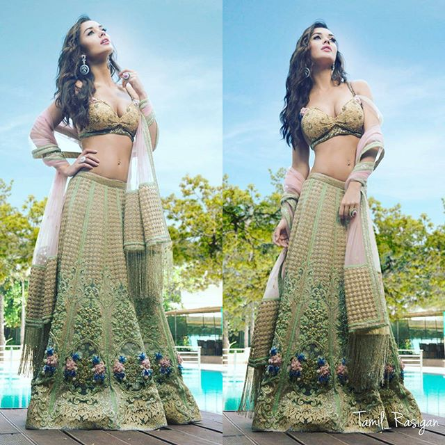 Hot Amy jackson in saree pictures
