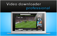 Video Download Professional plugin for Google Chrome