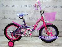 Sepeda Anak Wimcycle Glitter 16 Inci