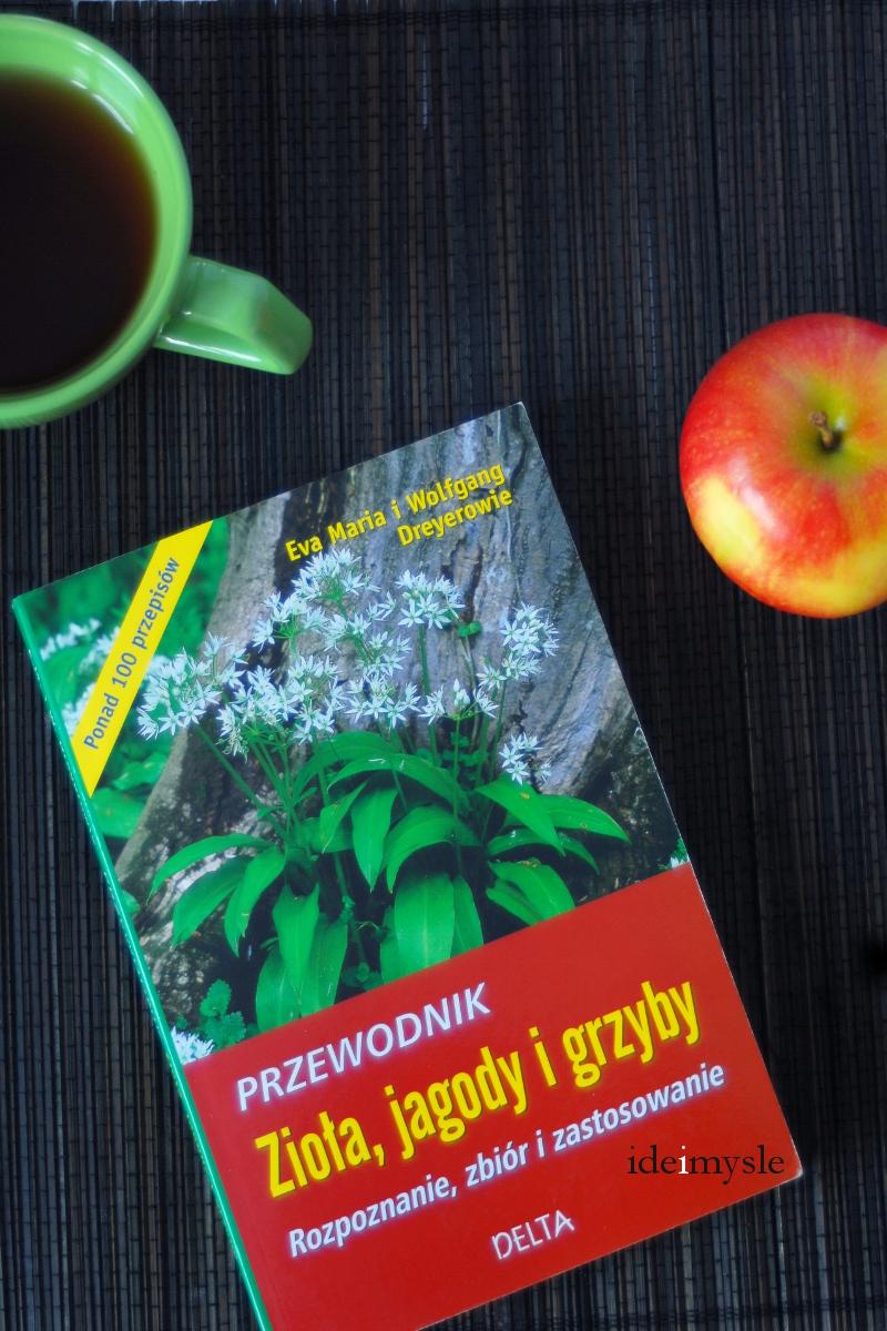przewodnik, dziko rosnące zioła, owoce jagodowe, leśne grzyby, eva maria dreyer, wolfgang dreyer, dreyerowie