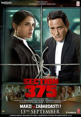 Section 375 2019 Hindi Movie Pre-DVDRip 1.4Gb Download