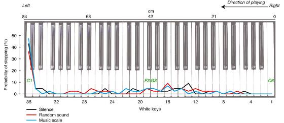 図:音楽演奏