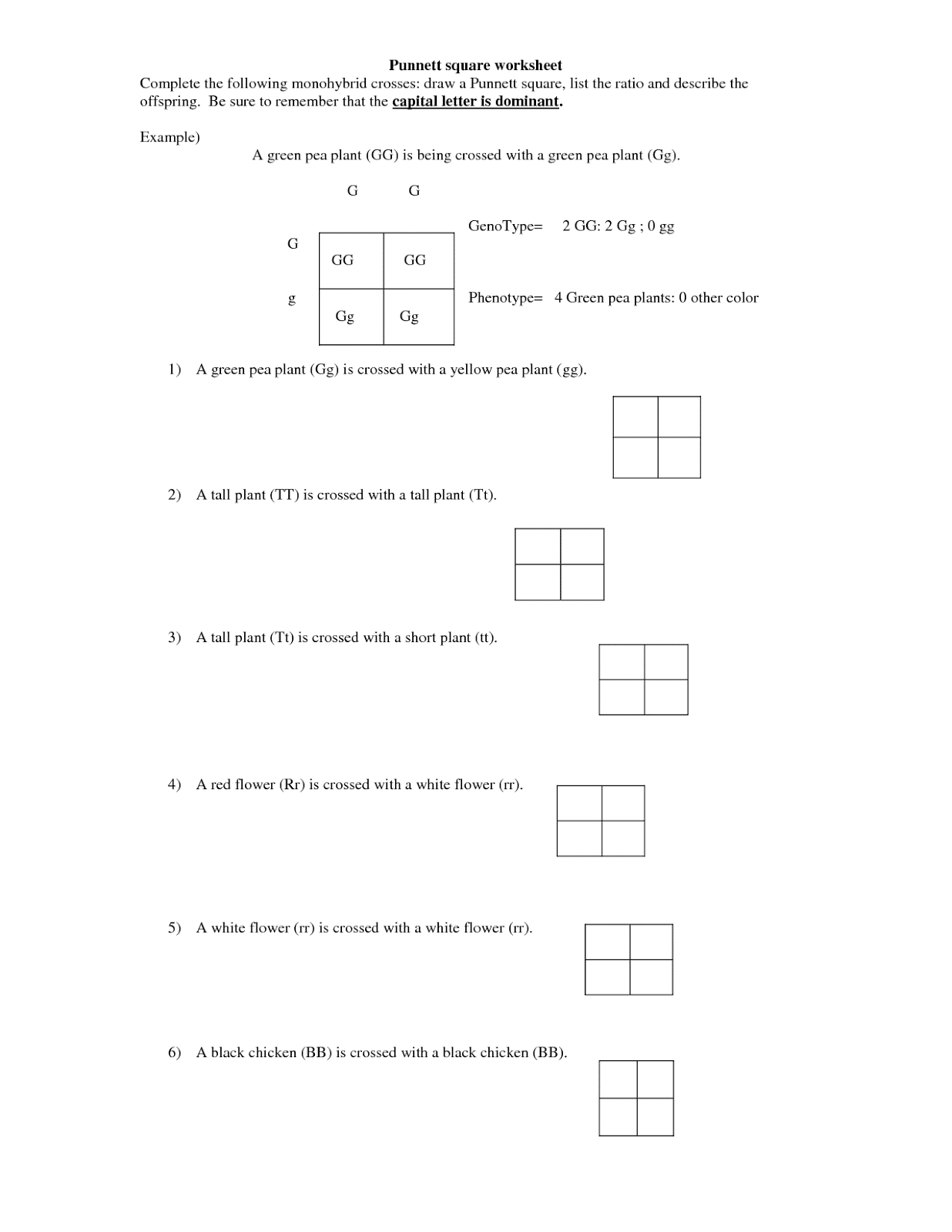 Monohybrid Cross Worksheet Key wiildcreative