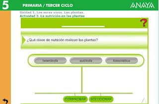 http://www.ceipjuanherreraalcausa.es/Recursosdidacticos/QUINTO/datos/02_Cmedio/datos/05rdi/ud01/03.htm