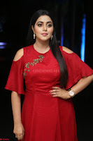 Poorna in Maroon Dress at Rakshasi movie Press meet Cute Pics ~  Exclusive 130.JPG
