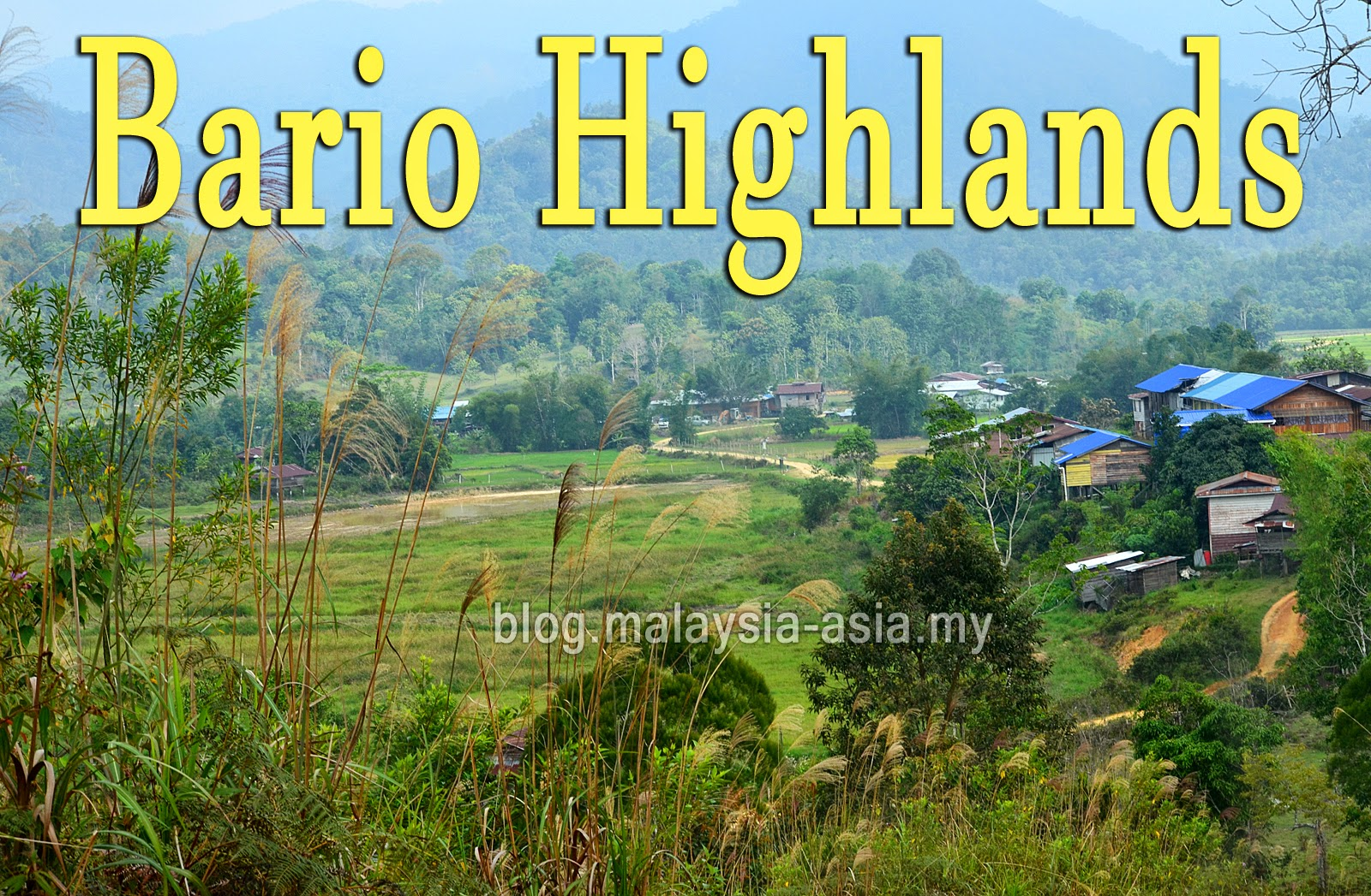 Travelling to Bario Highlands