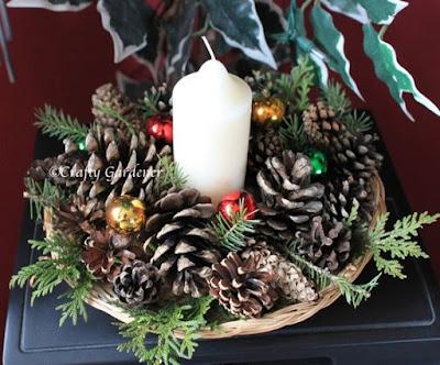 http://www.craftygardener.ca/nuts-pinecones/