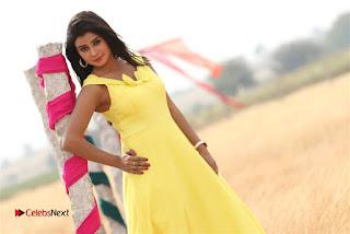 Misimi Telugu Movie Stills  0007.jpg