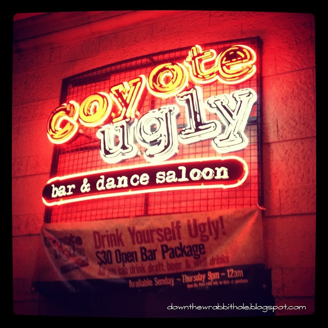 Las Vegas clubs, New York New York club, Las Vegas Coyote Ugly