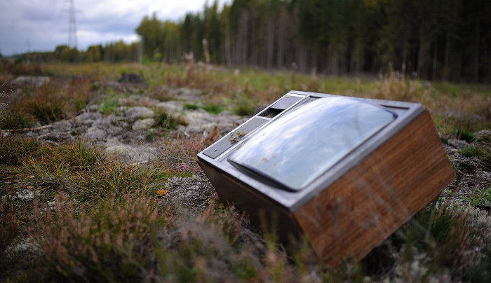 старый телевизор в лесу