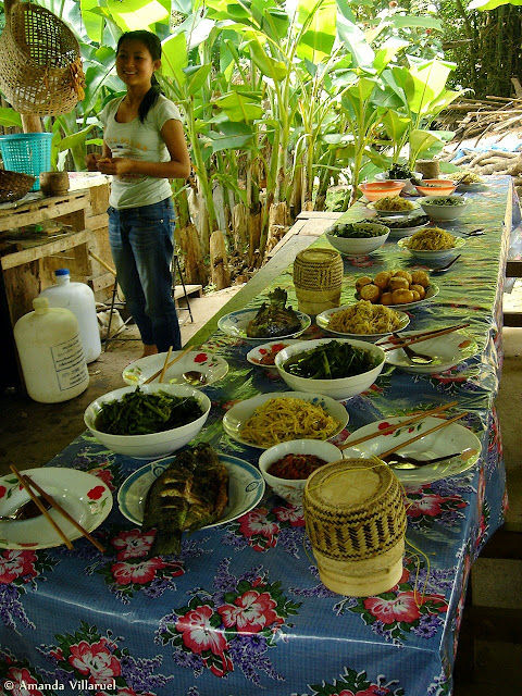 Lunch at Ock Pop Tok center in Laos