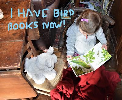 Josie and Her Bird Books