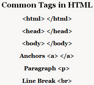 Most Used Tags of HTML