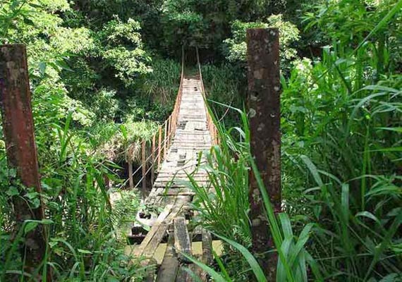 Kotmale Footbridge Sri lanka