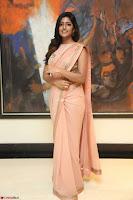 Eesha Rebba in beautiful peach saree at Darshakudu pre release ~  Exclusive Celebrities Galleries 005.JPG