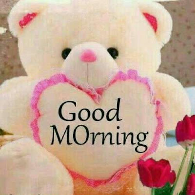 Top 10 Good Morning Teddy Bear Greetings Pictures For Whatsapp