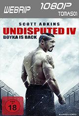 Boyka: Undisputed IV (2016) WEBRip 1080p