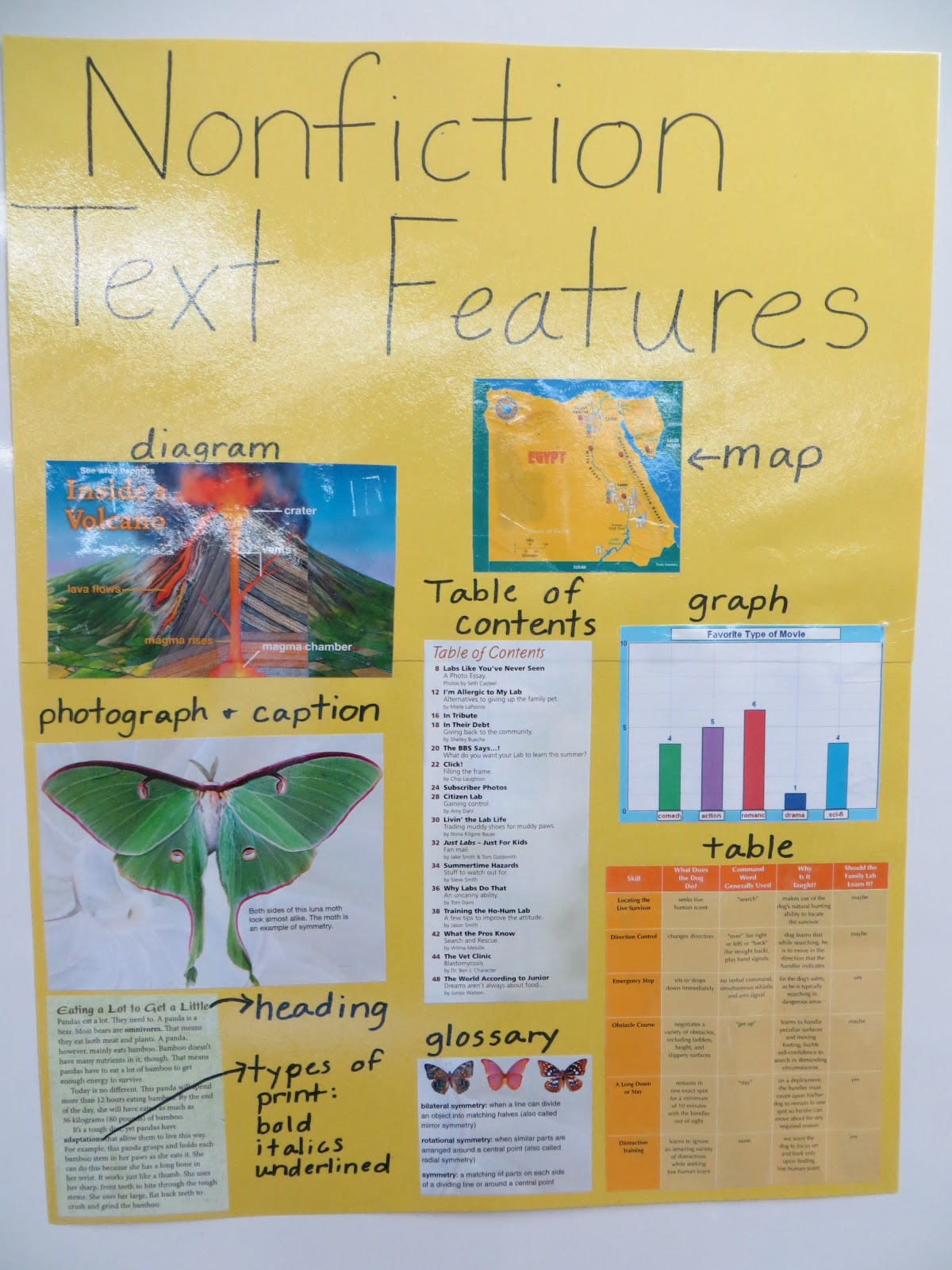 Nonfiction Text Features Worksheets 4th Grade