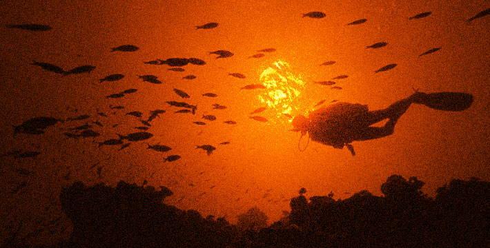 स्कुबा डायव्हिंग - मराठी भयकथा | Scuba Diving - Marathi Bhaykatha
