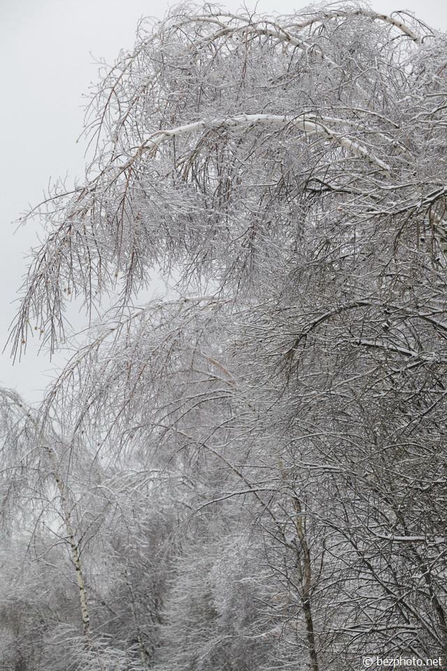 ледяной дождь 2016