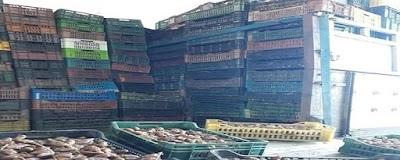 أريانة: حجز 32 طنا من التمور الفاسدة في سيدي ثابت