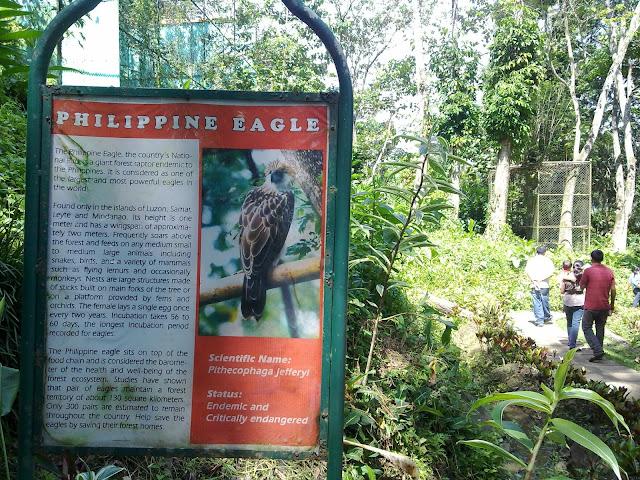 Davao City Destination, Philippine Eagle Center