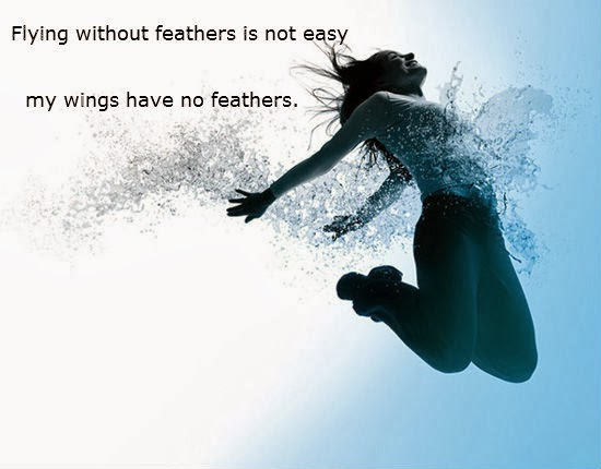 Flying without feathers is not easy; my wings have no feathers.  -Plautus Quote
