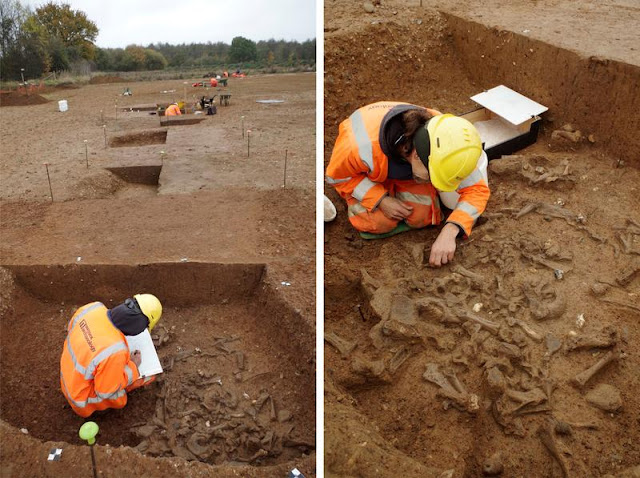 Major Neolithic ceremonial enclosure uncovered at Windsor