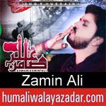 https://www.humaliwalyazadar.com/2018/09/zamin-ali-nohay-2019.html