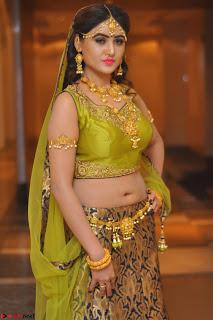 Sony Charishta in Green Choli Ghagra Transparent Chunni Ethnic Wear March 2017 047.JPG