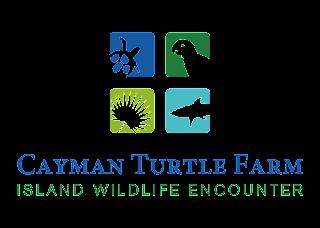 Cayman Turtle Farm Logo Vector