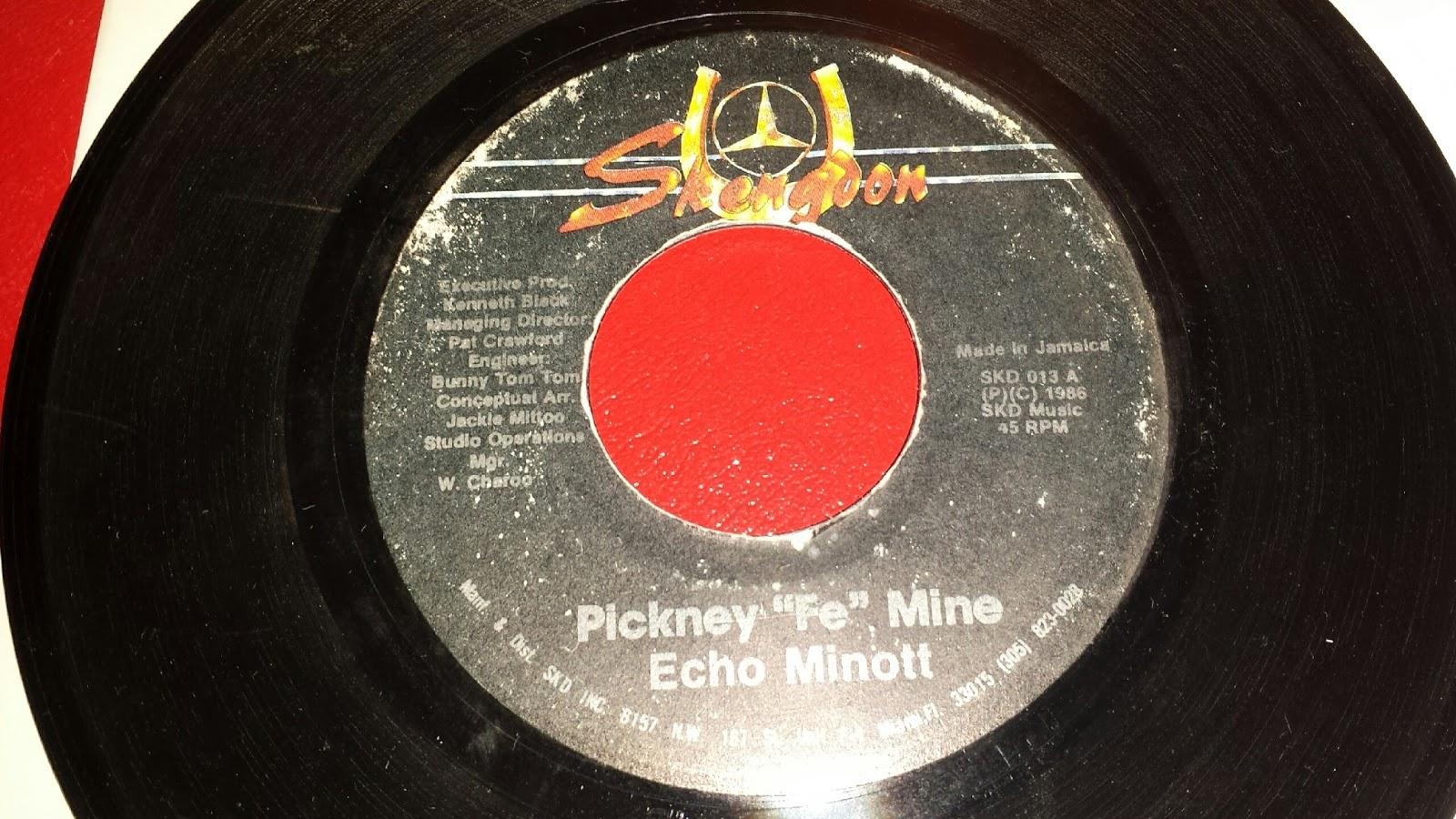 Echo Minott Pickney Fe Mine