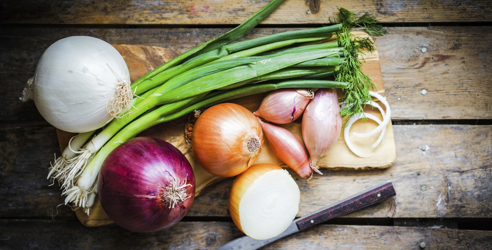 How To Grow Onions ! Garden Bible