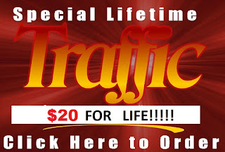 Order Your Lifetime Website or Blog Traffiic Now!