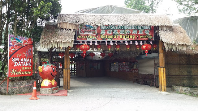 Genting Strawberry Leisure Farms