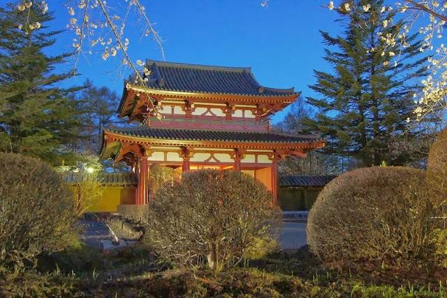 聖光寺の桜