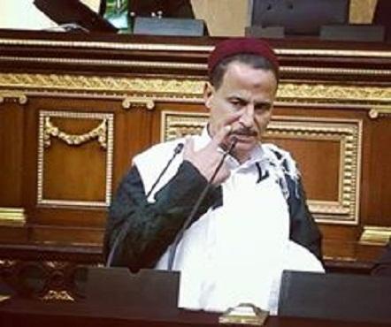 نائب مطروح : المطالبة بإقالة وزير التموين هدفها الشو الإعلامي