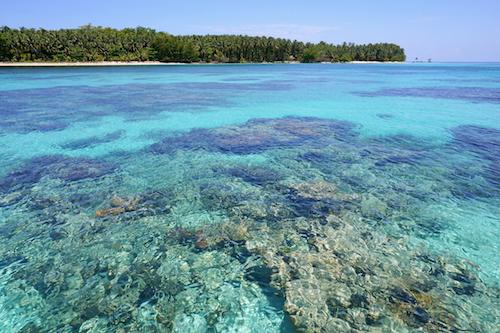 Frontière entre le large et le lagon, le platier récifal est la partie la moins profonde du récif corallien. C'est une zone de haute énergie, exposée aux vagues et généreusement ensoleillée. Photo : Seaphotoart – Fotolia