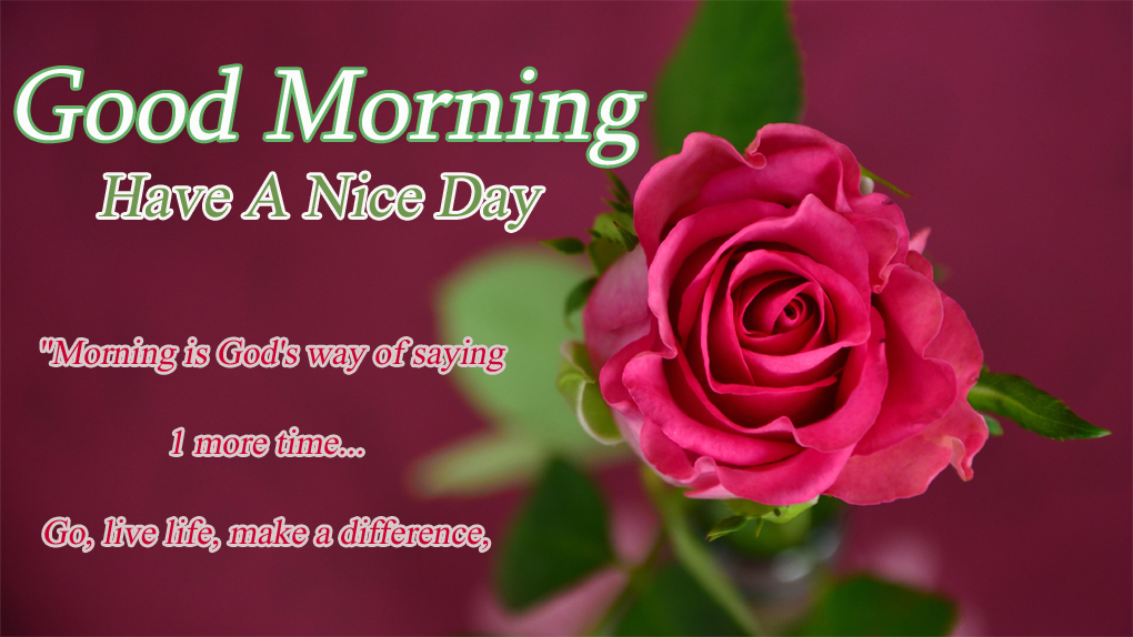 good morning wishes greetings inspiring quotes  Madhuryas World - Quote...