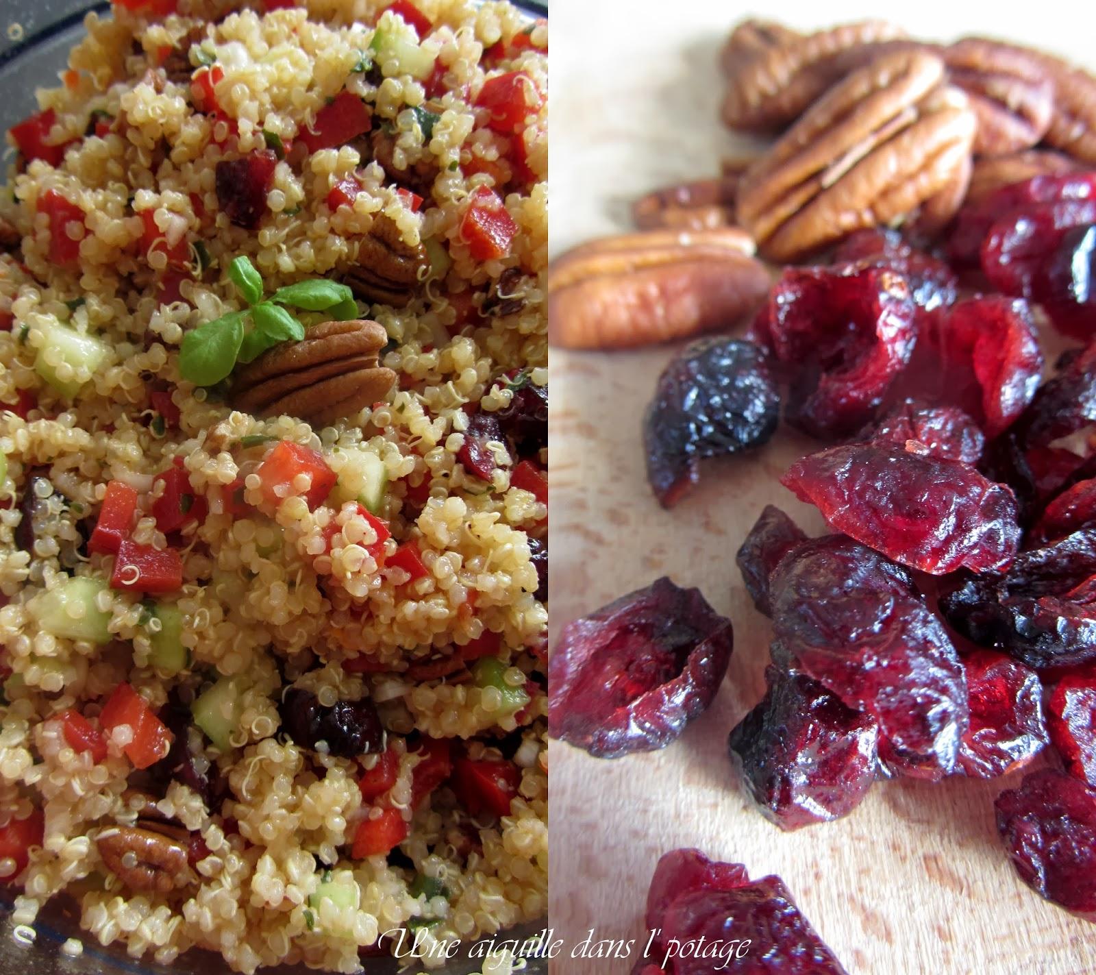 Salade de quinoa aux noix de pécan et cramberries