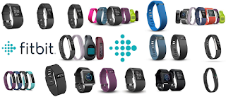 Fitbit User Guide