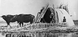 Madan house built of reeds