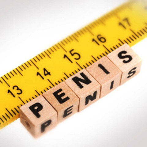 Site question Increase penis size when your 14 completely agree