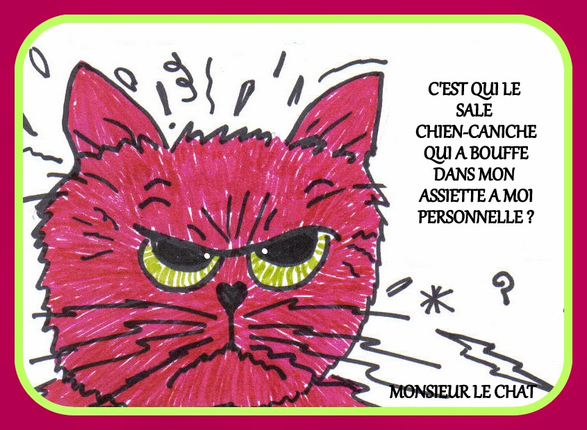 chat, chien, caniche