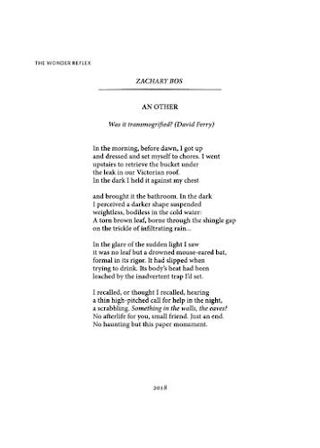 Poem An Other The Wonder Reflex