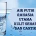 Manfaat Minum Air Putih Untuk Kesehatan Kulit