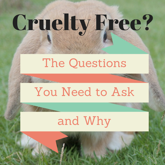 cruelty free bunny - questions to ask