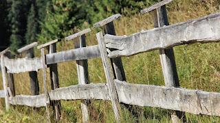 Natuur achtergrond met houten hek.