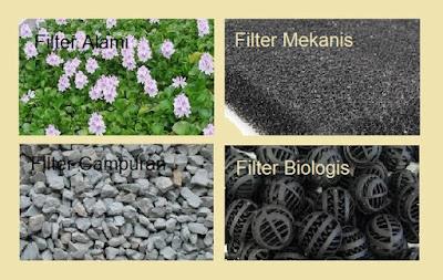 akuaponik,urban hidroponik, urban farming