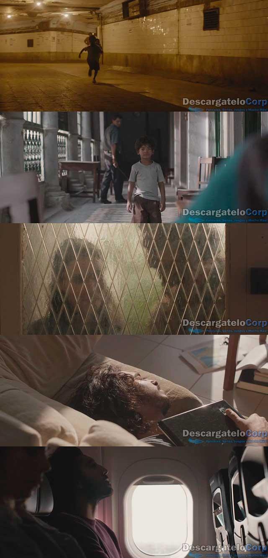 Un Camino a Casa (2016) HD 720p